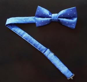 Fliege Sprenkel Royalblau
